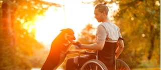 If you are in need of a wheelchair or other durable medical equipment, please click the link below.