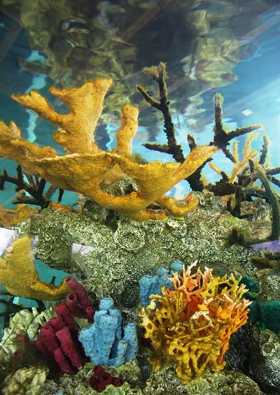 colorful coral reef sculpture in aquarium