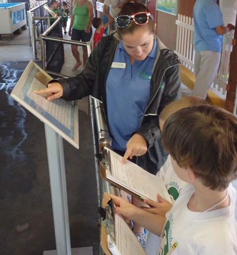 Science Educator teaching campers about sea turtles in the rehabilitation center.