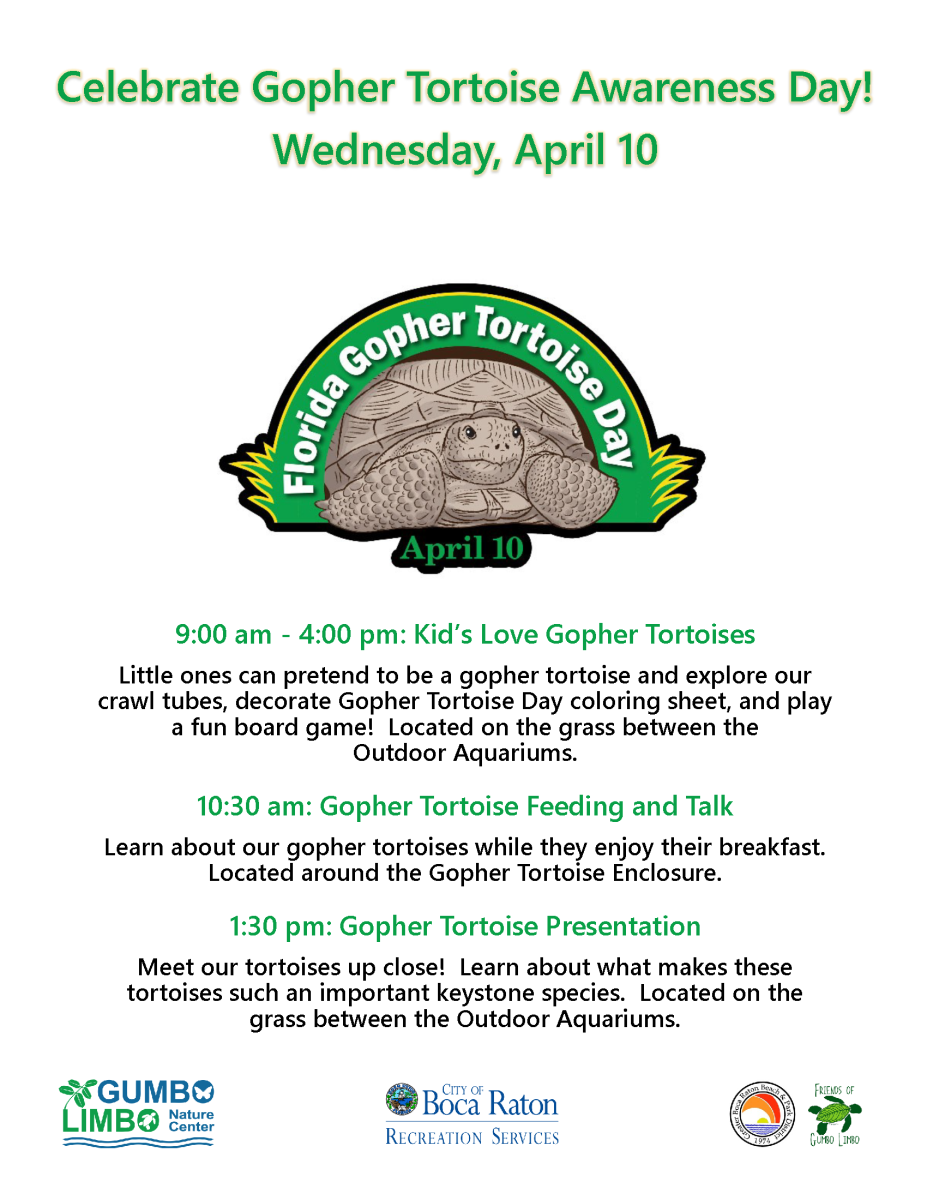 Celebrate Gopher Tortoise Awareness Day! Wednesday, April 10.  9:00 am - 4:00 pm: Kid's Love Gopher Tortoises  Little ones can pretend to be a gopher tortoise and explore our crawl tubes, decorate Gopher Tortoise Day coloring sheet, and play a fun board game!  Located on the grass between the Outdoor Aquariums.  10:30 am: Gopher Tortoise Feeding and Talk  Learn about our gopher tortoises while they enjoy their breakfast. Located around the Gopher Tortoise Enclosure.  12:00 and 3:00 pm: Gopher Tortoise Presentation  Meet our tortoises up close!  Learn about what makes these tortoises such an important keystone species.  Located on the grass between the Outdoor Aquariums.  Gumbo Limbo Natue Center. City of Boca raton recreation Services. Greater Boca Raton Beach and Park District. Friends of Gumbo Limbo.