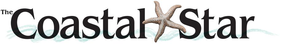 coastal star logo