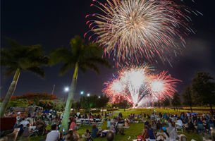 people sitting on the grass looking at fireworks in the sky.