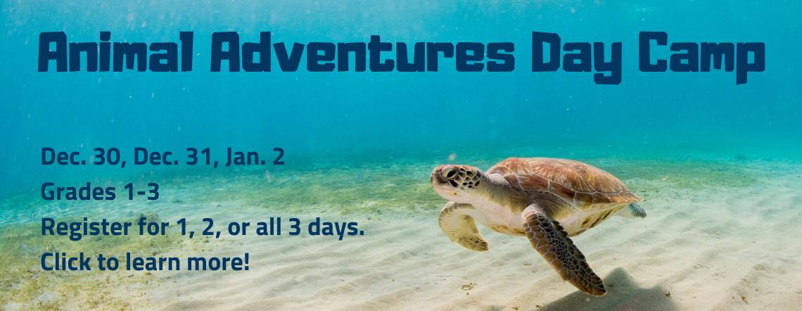 animal adventures camp, grades 1-3, december 30, 31, january 2.
