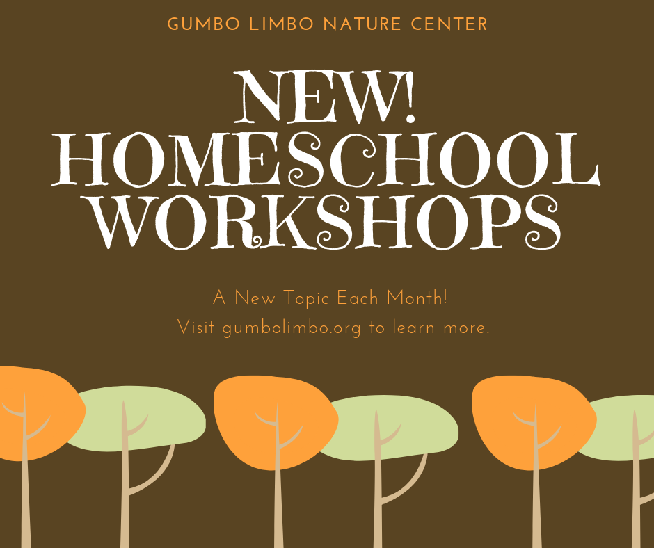 Gumbo Limbo Nature Center, New! Homeschool Workshops.  A New topic each month.
