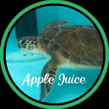 Open Apple Juice's patient page.