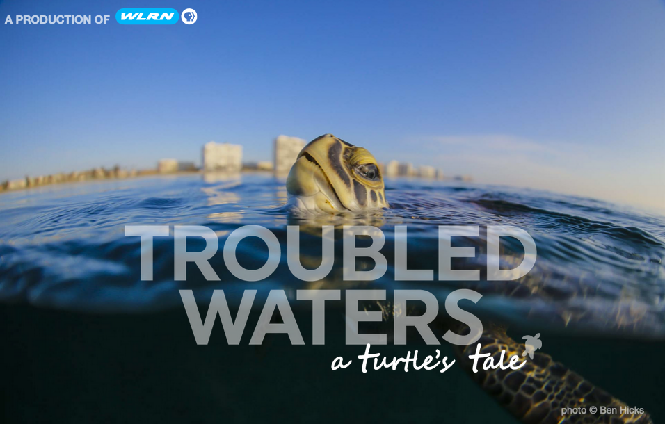 Troubled Waters Documentary