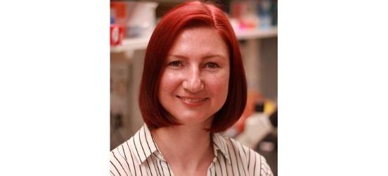Enhancing Chemotherapy by Targeting Metabolic Pathways