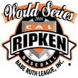 Cal Ripken Baseball Rookie State Tournament