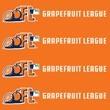 Major League Baseball Spring Training (Nationals and Astros)